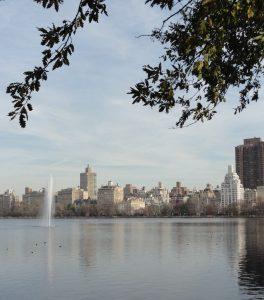 Central Park 2014
