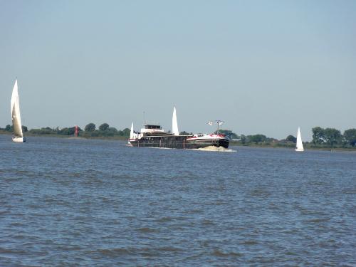 Elbe Regatta